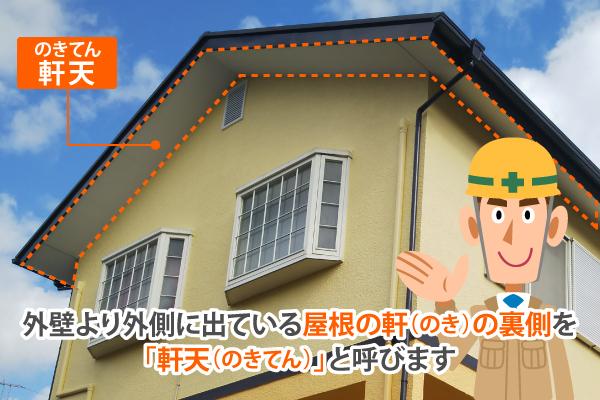 外壁より外側に出ている屋根の軒(のき)の裏側を「軒天(のきてん)」と呼びます
