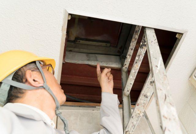 屋根からの雨漏れ 屋根裏も点検