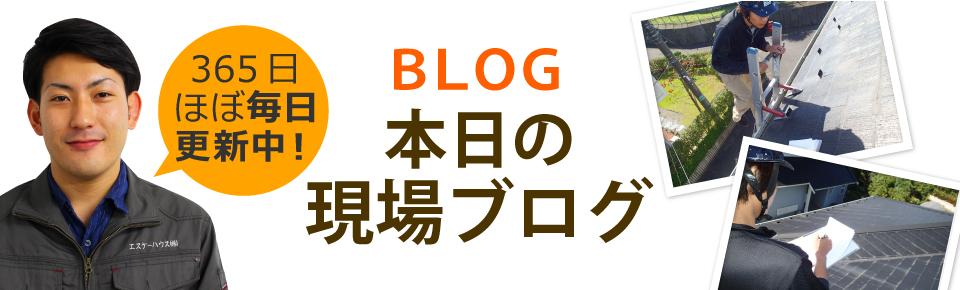 宮崎市、日南市、都城市やその周辺エリア、その他地域のブログ